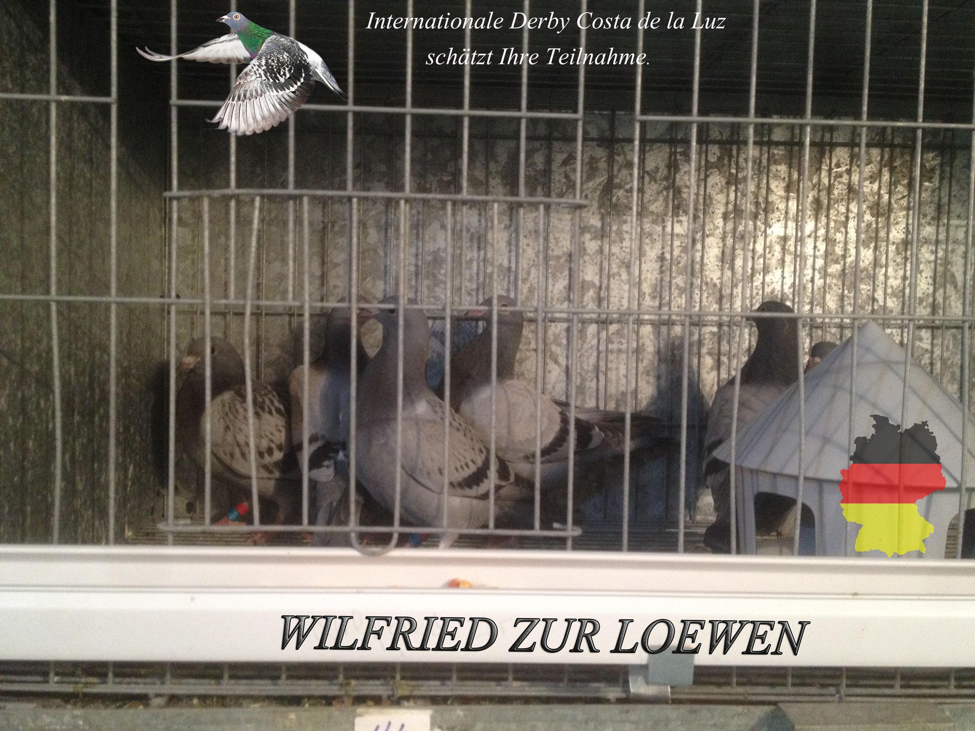 WILFRIED ZUR LOEWEN