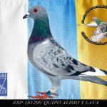 ESP-181290 EQUIPO ALISIO Y LAVA