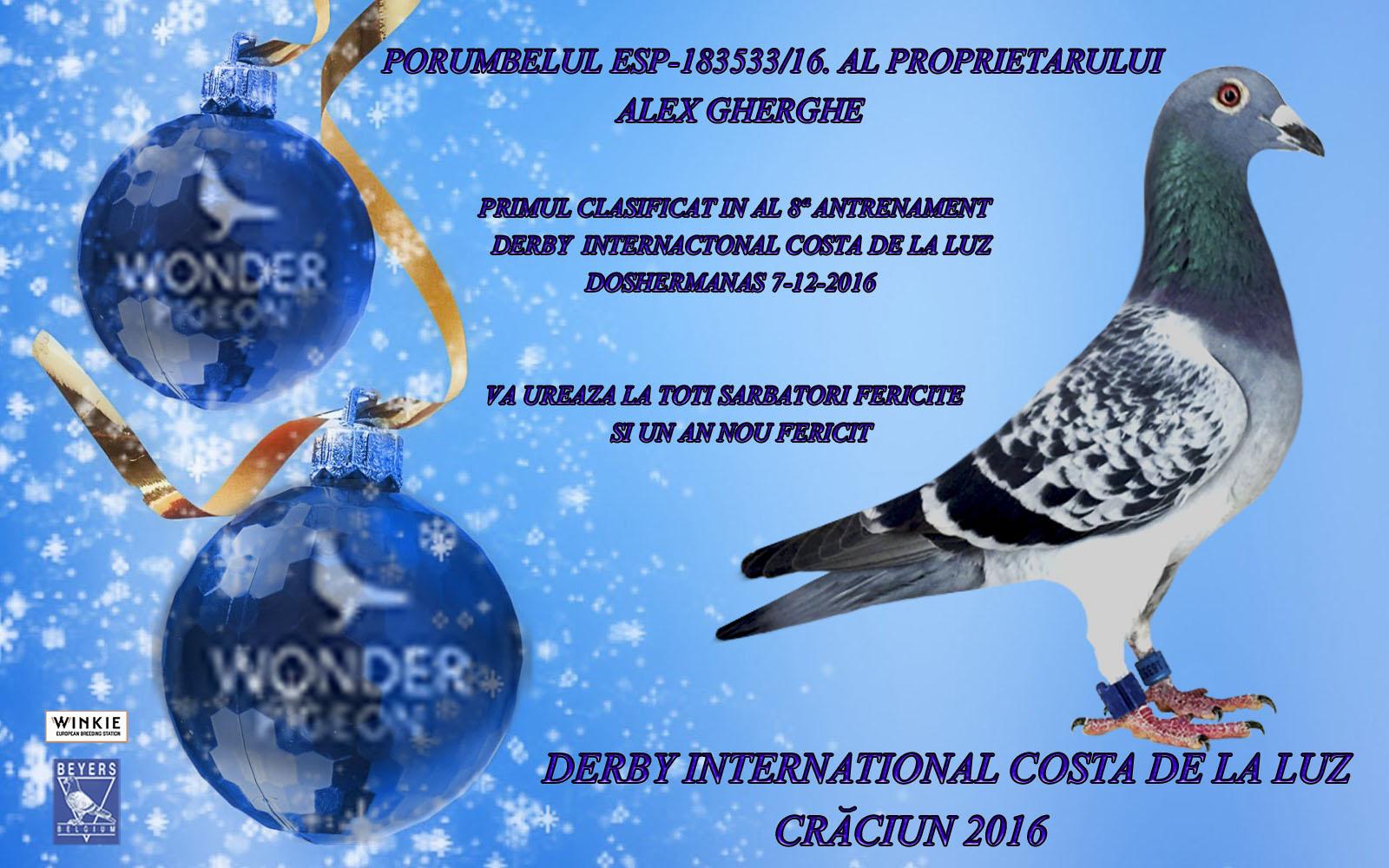navidad-alex-wonder