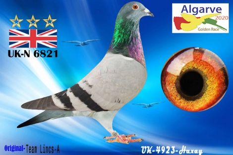 GB-N-06821/20 - TEAM LINCS-A - HEMBRA