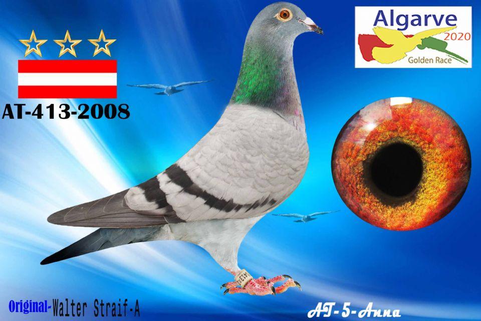 AT-413-2008/20 - HEMBRA - WALTER STRAIF-A