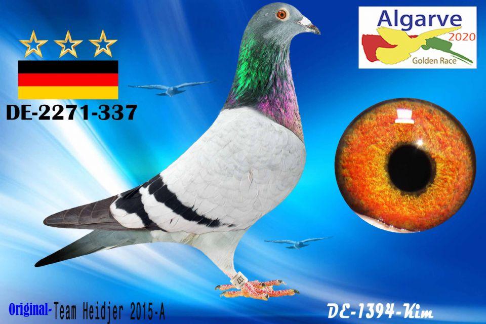 DV-02271-337/20 - MACHO - TEAM HEIDJER 2015-A