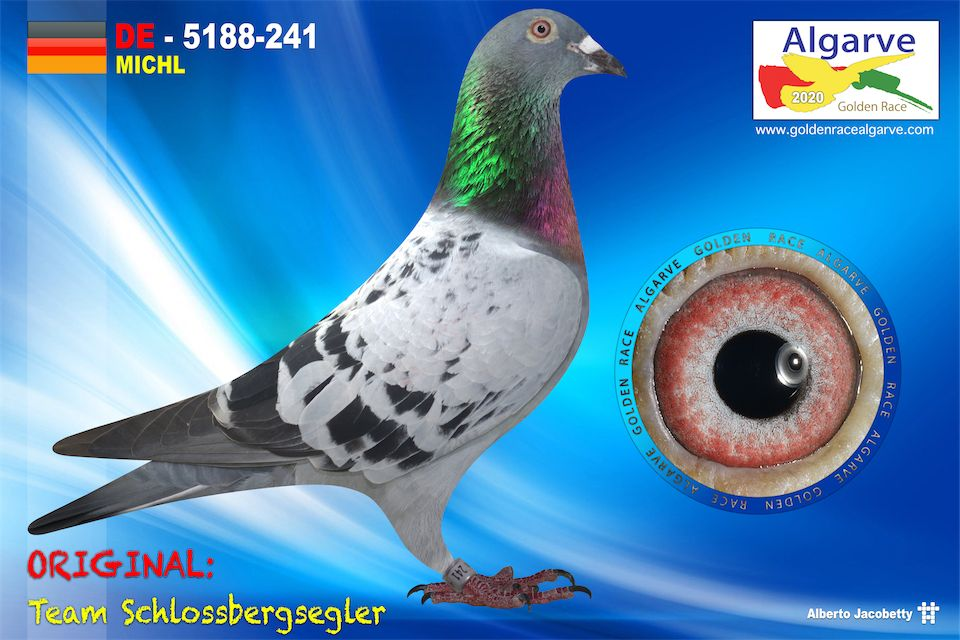 DV-05188-241/20 - HEMBRA - TEAM SCHLOSSBERGSEGLER