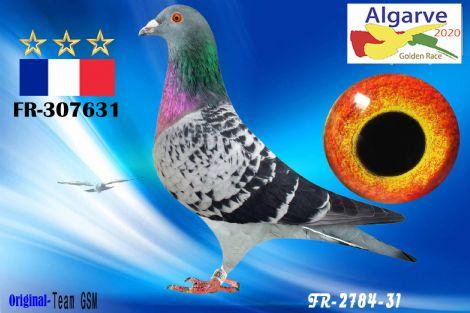 FR-307631/20 - MACHO - TEAM GSM