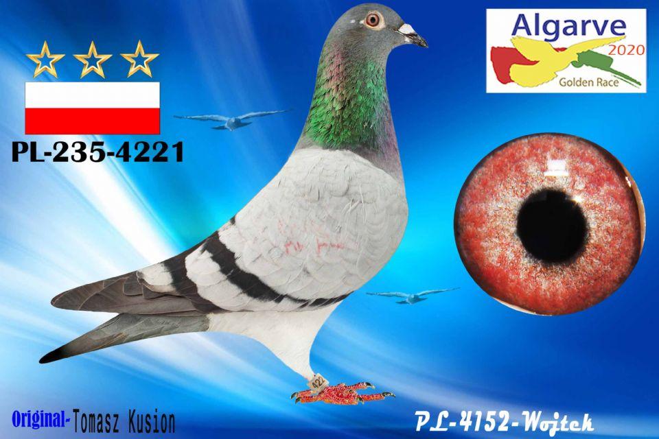 PL-0235-4221/20 - MACHO - TOMASZ KUSION