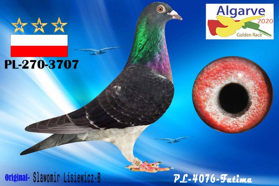 PL-0270-3707/20 - HEMBRA - SLAWOMIR LISIEWICZ-B