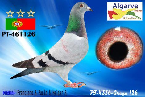 PT-0461126/20 - HEMBRA - FRANCISCO & PAULO & HELDER-B